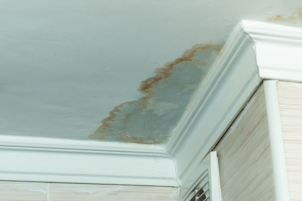 Water Damage Effects – Short and Long-Term