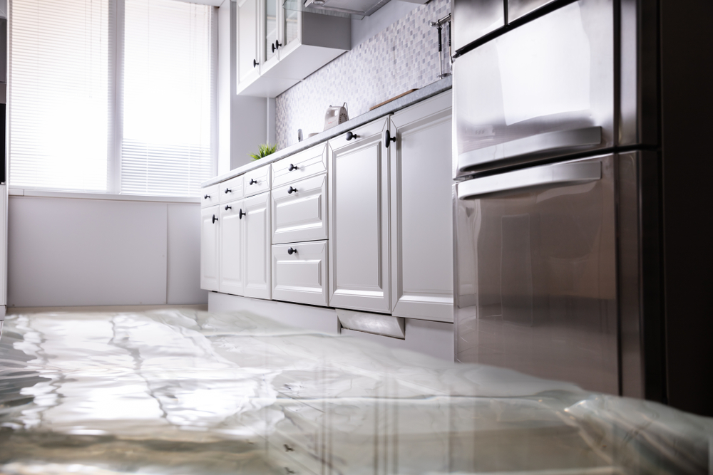 water damage removal process explained